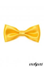 Fliege mit Einstecktuch - Gelb
