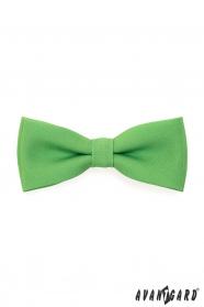 Herren Fliege mit Einstecktuch Grassgrün