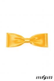 Einfarbige gelbe Fliege Glanz